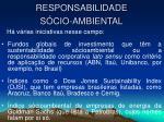 responsabilidade s cio ambiental3