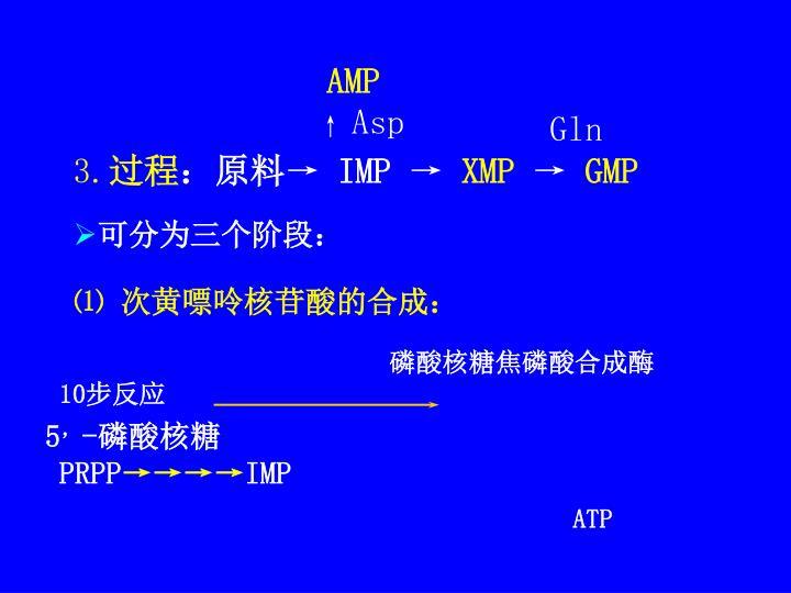 磷酸核糖焦磷酸合成酶