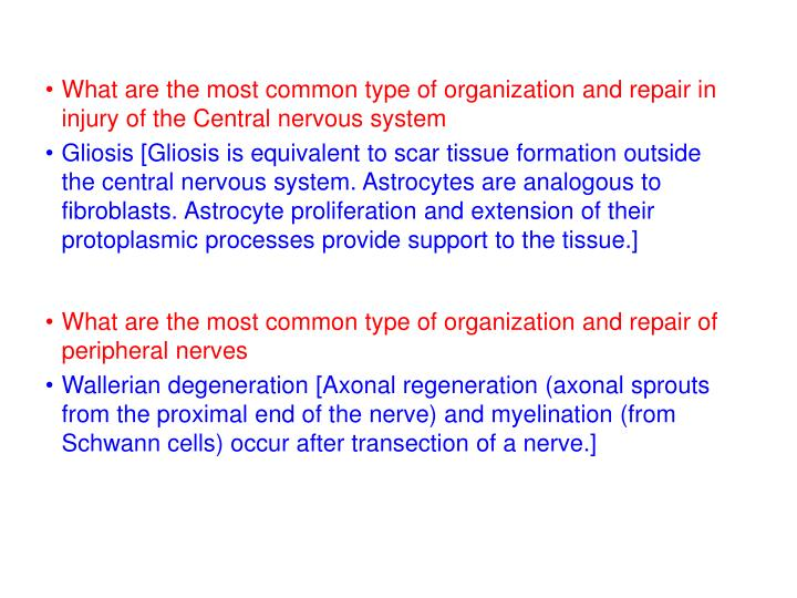 What are the most common type of organization and repair in injury of the Central nervous system