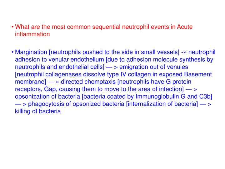 What are the most common sequential neutrophil events in Acute inflammation