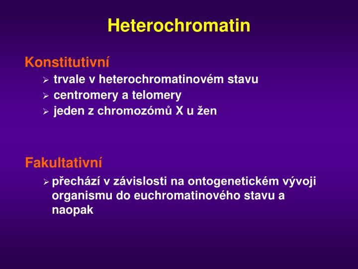 Heterochromatin