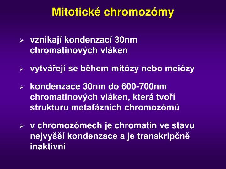 Mitotické chromozómy