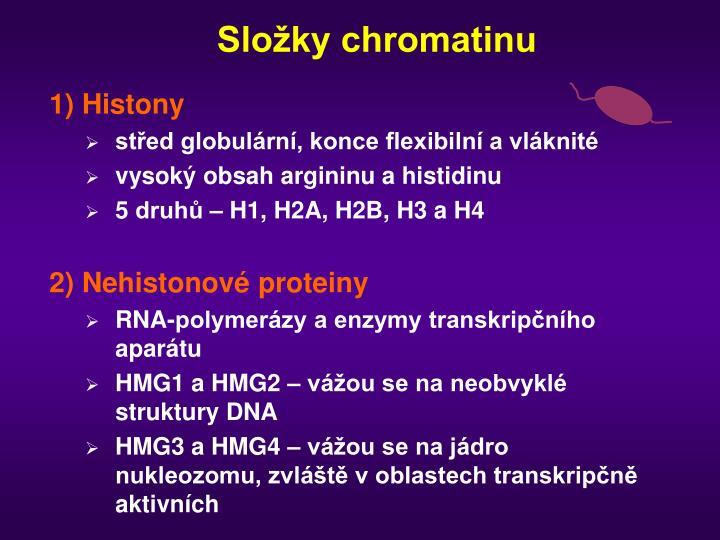 Složky chromatinu