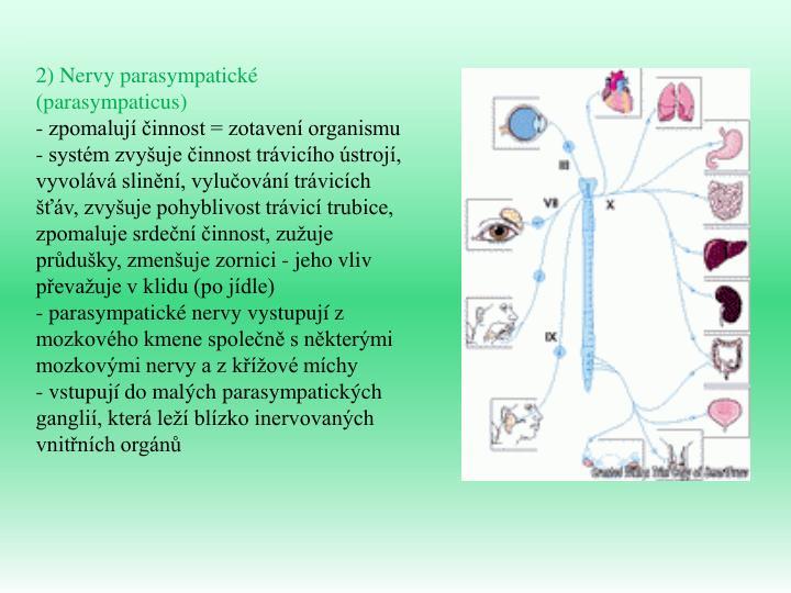 2) Nervy parasympatické (parasympaticus)