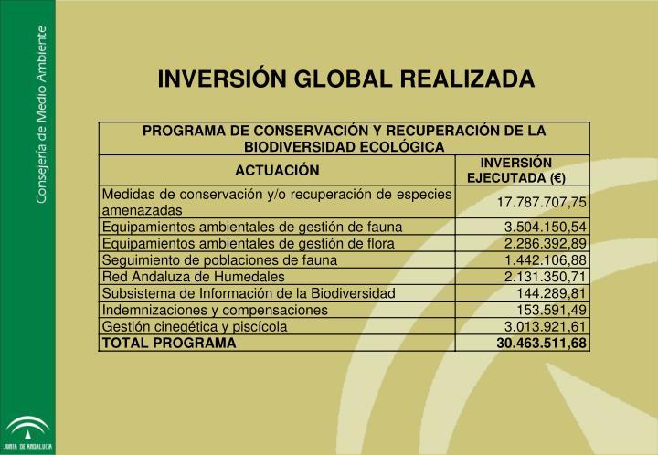 INVERSIÓN GLOBAL REALIZADA