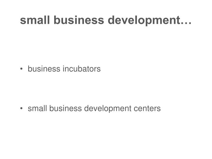 small business development…