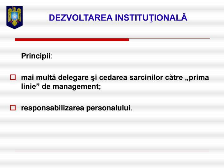 DEZVOLTAREA INSTITUŢIONALĂ