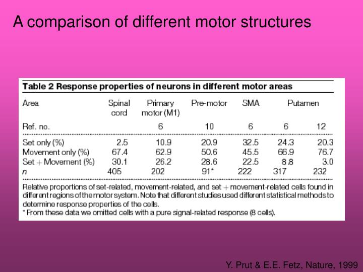 A comparison of different motor structures