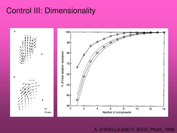 Control III: Dimensionality
