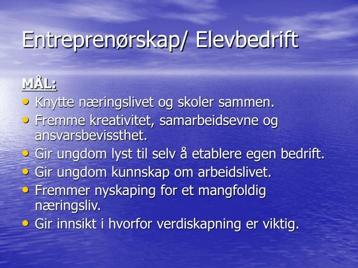 Entreprenørskap/ Elevbedrift