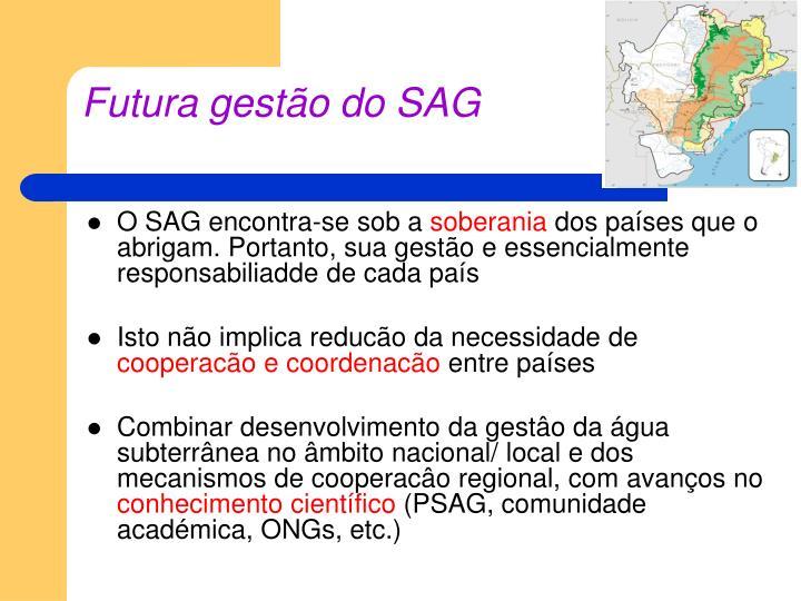 Futura gestão do SAG