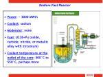 sodium fast reactor