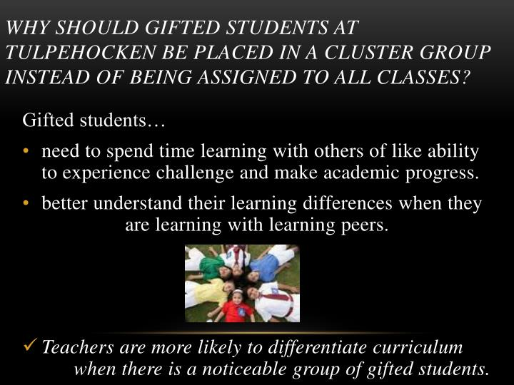 Why should gifted students at Tulpehocken be placed in a cluster group instead of being assigned to all classes?