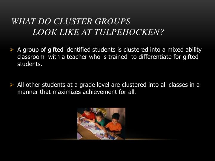 What do cluster groups