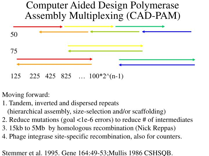 Computer Aided Design Polymerase Assembly Multiplexing (CAD-PAM)