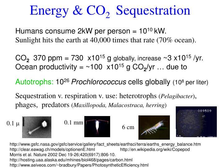 Energy & CO