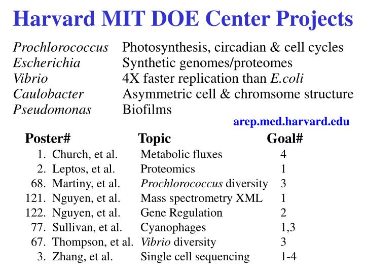 Harvard MIT DOE Center Projects