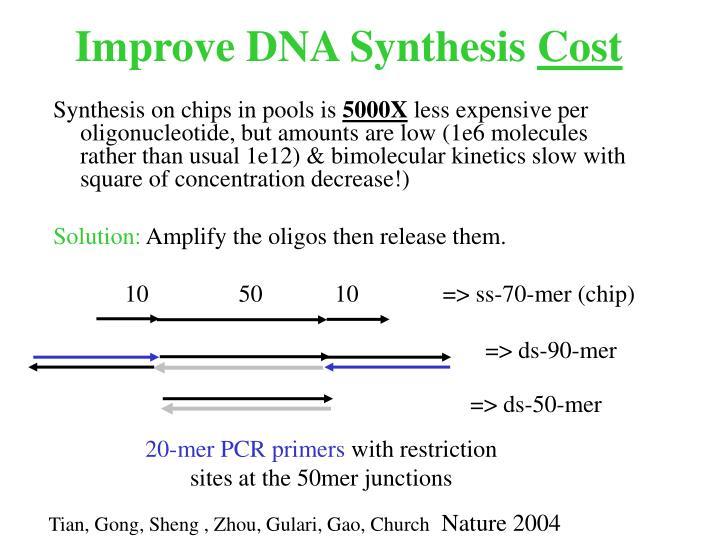 Improve DNA Synthesis