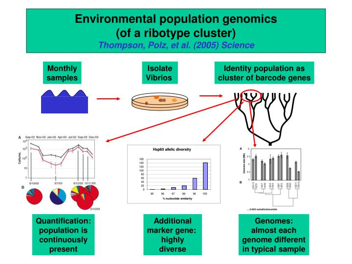 Environmental population genomics