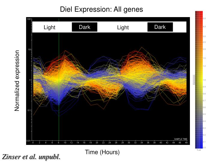 Diel Expression: All genes