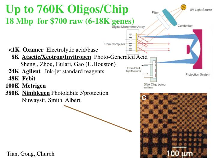 Up to 760K Oligos/Chip