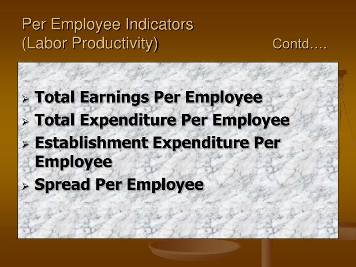 Per Employee Indicators