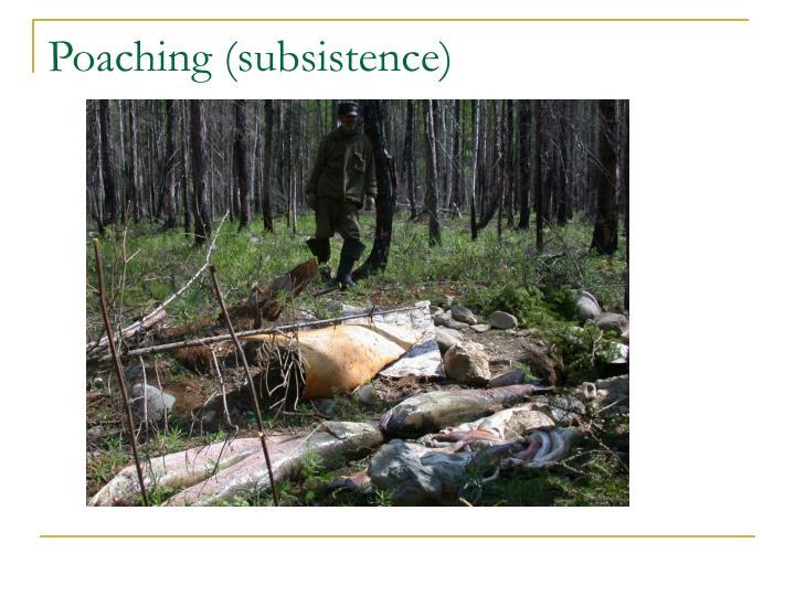Poaching (subsistence)