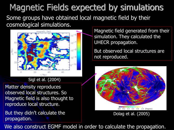 Magnetic Fields expected by simulations