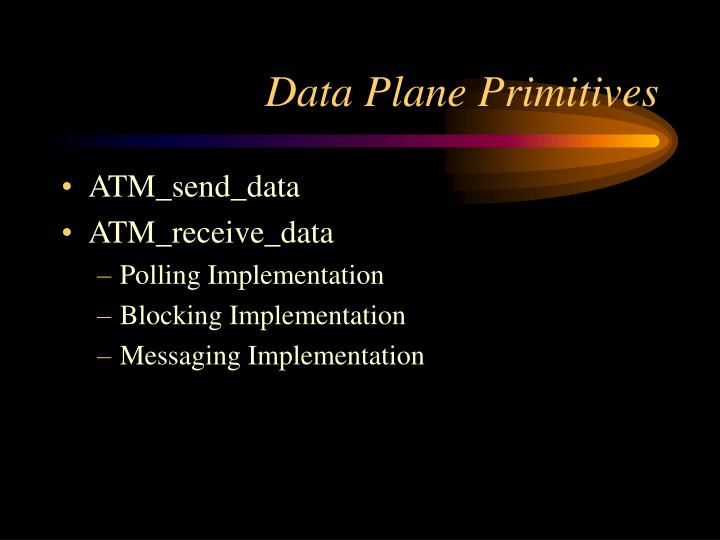 Data Plane Primitives