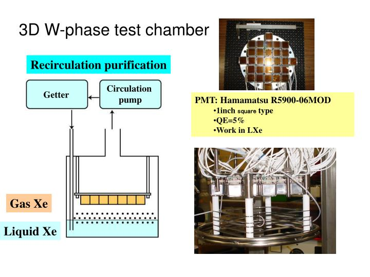3D W-phase test chamber