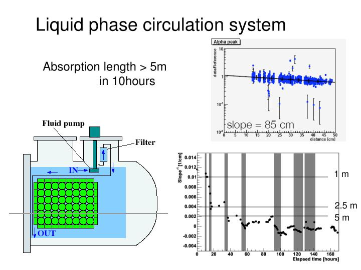 Liquid phase circulation system