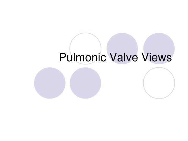 Pulmonic Valve Views
