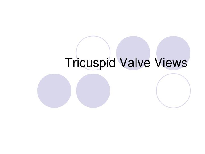 Tricuspid Valve Views