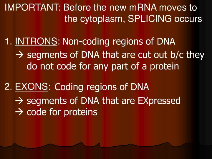 IMPORTANT: Before the new mRNA moves to