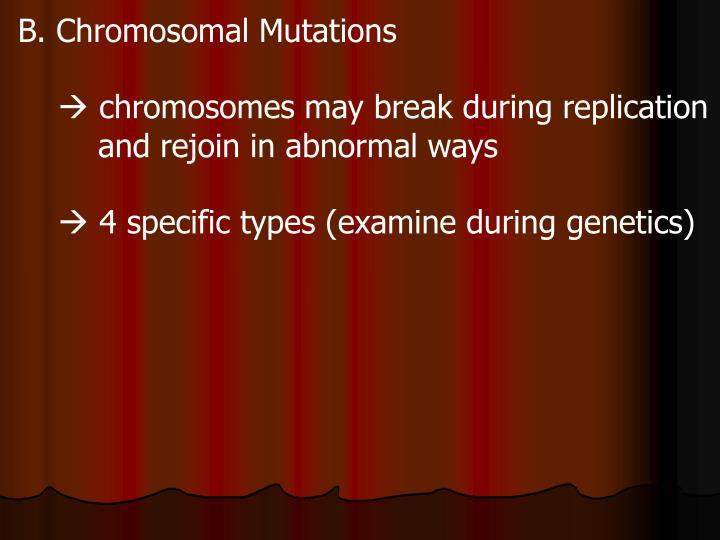 B. Chromosomal Mutations