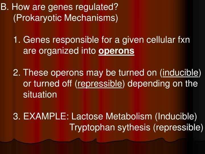 B. How are genes regulated?