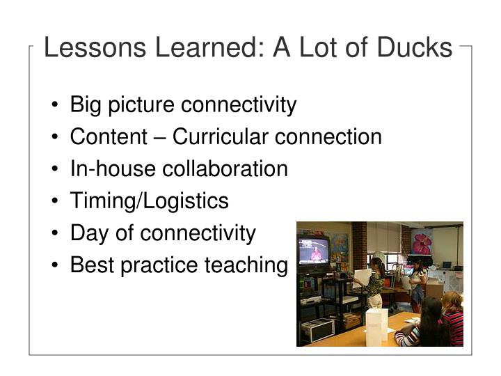 Lessons Learned: A Lot of Ducks