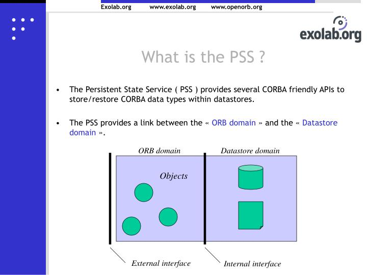 What is the PSS ?