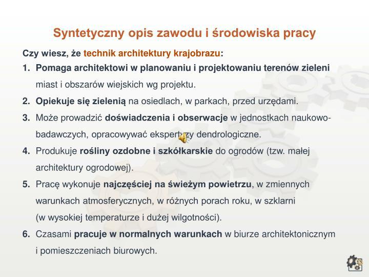 Syntetyczny opis zawodu i środowisk