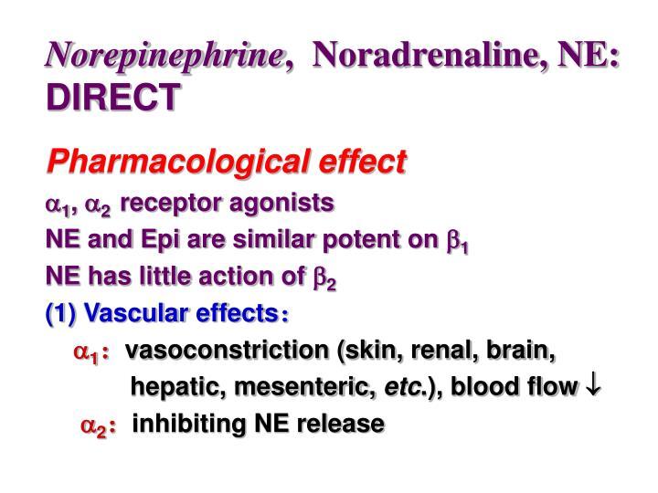 Norepinephrine