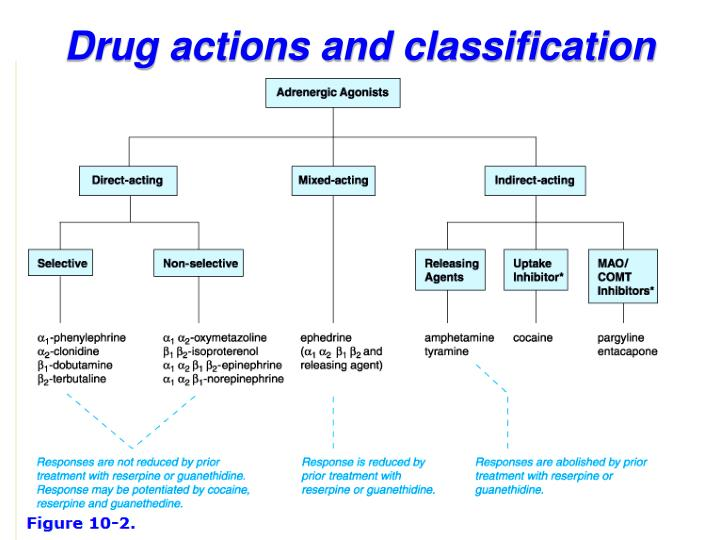 Drug actions and classification