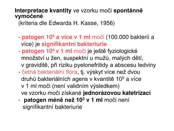 Interpretace kvantity