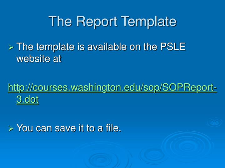 The Report Template