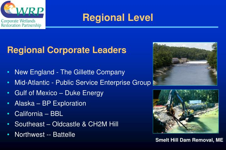 Regional Corporate Leaders