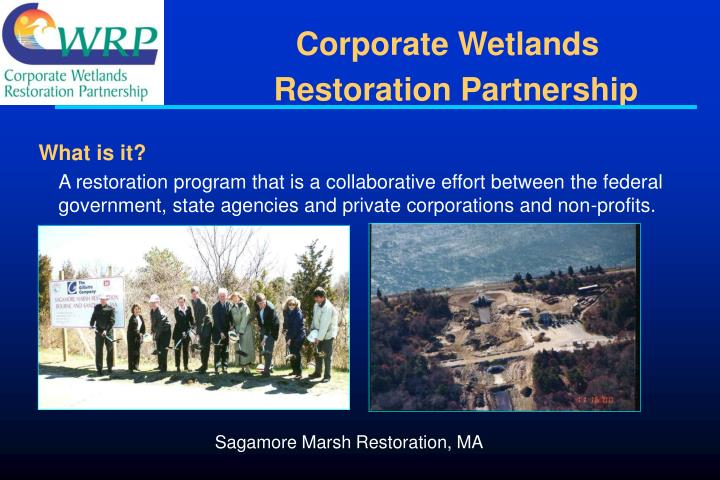 Corporate Wetlands