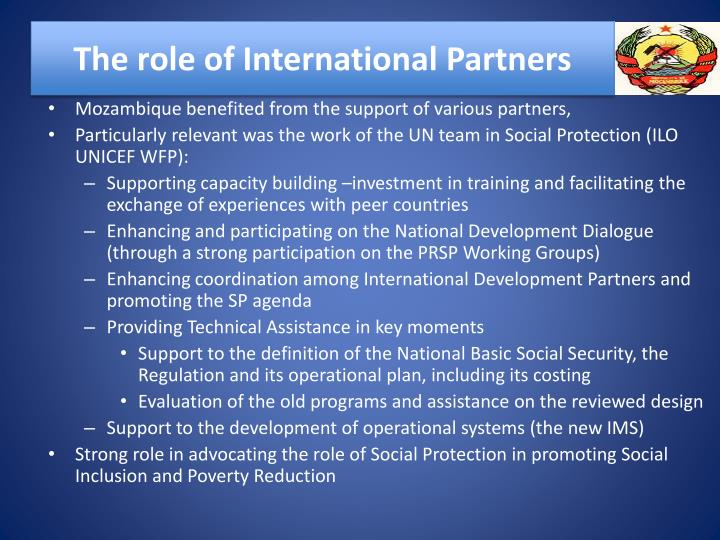 The role of International Partners