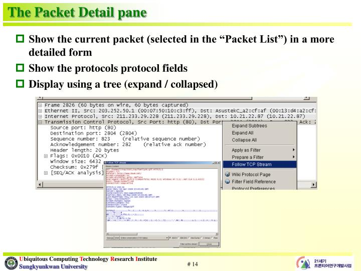 The Packet Detail pane