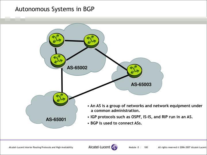Autonomous Systems in BGP