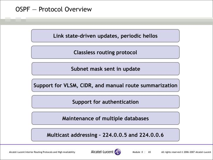 OSPF — Protocol Overview