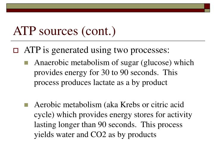 ATP sources (cont.)